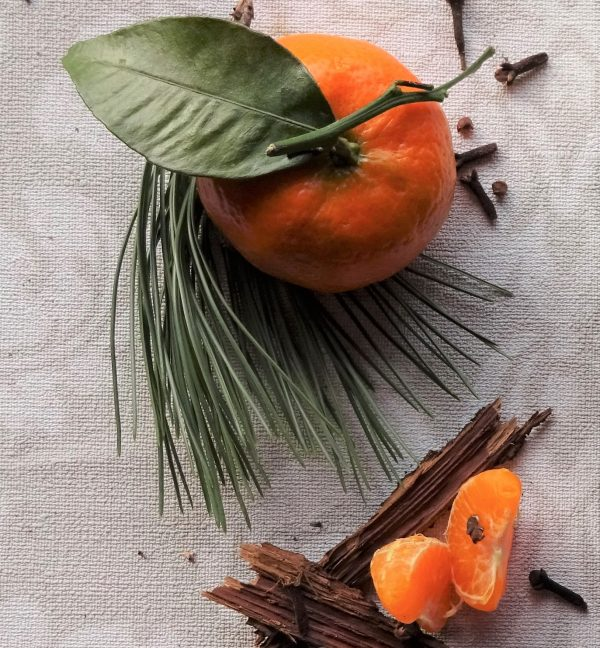 bougie audine annecy végétale