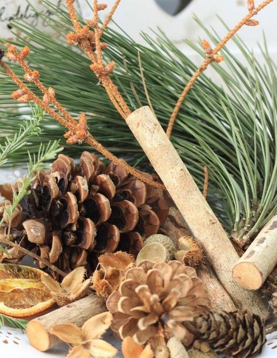 bougie audine annecy végérale forêt sapin